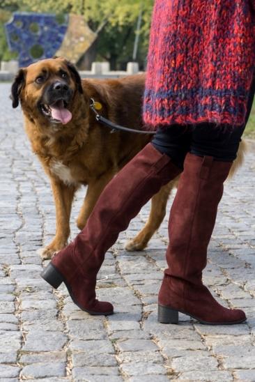 edytaandrzejewska.blog 22 spacer z psem