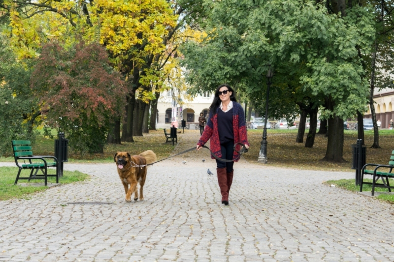 edytaandrzejewska.blog 4 spacer z psem