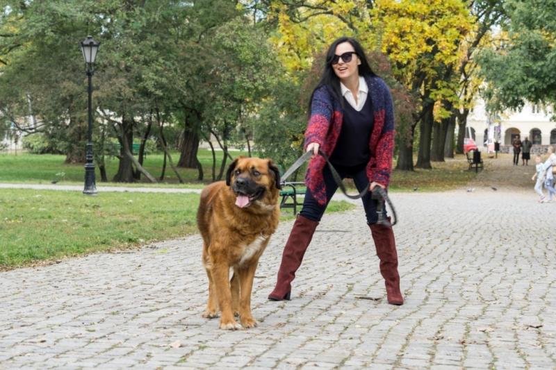 edytaandrzejewska.blog 5 spacer z psem