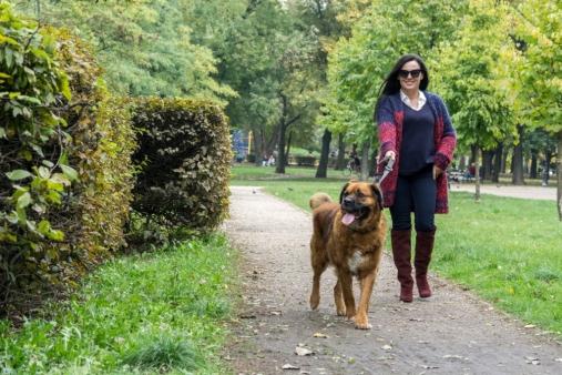 edytaandrzejewska.blog 9 spacer z psem
